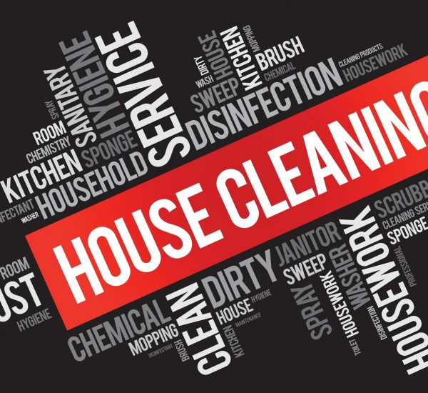 Cleaning Services 2
